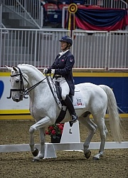 Jacqueline Brooks on D Niro, RAWF 2014 Dressage
