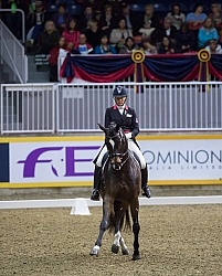 Karen Pavicic on Don Daquiri, RAWF 2014 Dressage