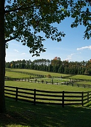 Fencing and Paddocks Wood Fencing and Paddocks