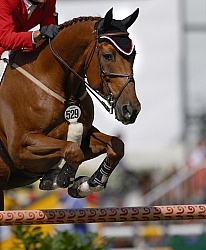 Chris Pratt Riding Rivendell  Westphalen Gelding at WEG 2006 A Protective Boots
