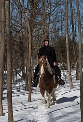 Winter Trail Riding Vertical