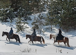 Winter Trail Riding in Group