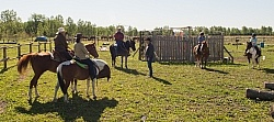 Extrme Cowboy Clinic with Lantz Mclaren at Horse Country