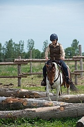 The Extreme Cowboy Race at Horse Country s Lantz McLaren Clinic