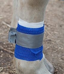 Leg Bandage, Marked to Check for Swelling