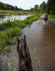 Horse Country Campground Water Crossing