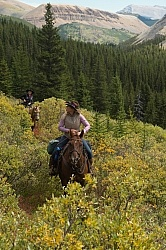 On the Trail On the Trail with Wild Deuce Outfitters