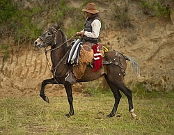 A Chagra at The Local Rodeo