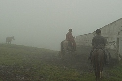 Riding in the Clouds from Bomboli, Ecuador