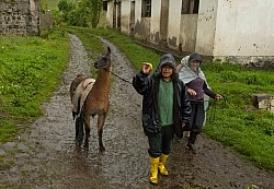 Ecuadorian Farmer on Trail on the Return From Bomboli