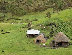 A typical farm in the High Andes. Ecuador