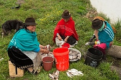 Ecuadorian Women Cleaning Fish