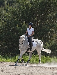 Saddlewood Appaloosa Show Dressage Serpentine