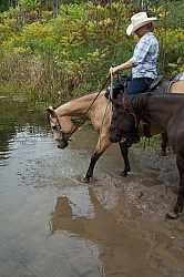 Ponying in the Ganaraska Forest