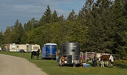 Trailers at Horse Country Campground