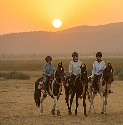 Sunset Ride in India
