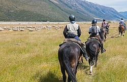 Day Ride From Boundary Hut, Wild Womens Expeditions with Adventure Horse Trekking New Zealand