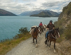 On the road Out of Dingleburn Station on the Land of the Long White Cloud Ride with Wild Womens Expeditions and Adventure Horse Trekking New Zealand