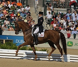 Alltech WEG Dressage, Ashely Holzer & Pop Art Ashley Holzer and Pop Art