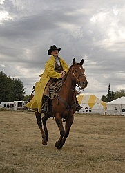 Wild Deuce Working Mountain Horse Competition