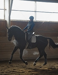 Dressage Schooling in Indoor Arena in Winter