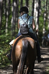 Trail Riding General