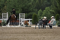 Judging the Rope Gate in the Trail Class