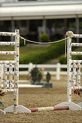 The Rope Gate in Trail Class