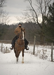 Winter Riding