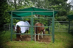The Covered Stalls at Pure Country Campgrounds Portable Stalls