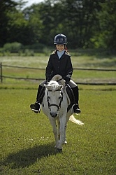 Kids Showing in Schooling Show