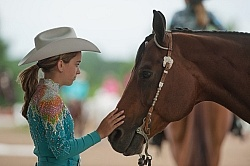 Quarter Horse Show Palgrave 2012 Western Show Turn Out
