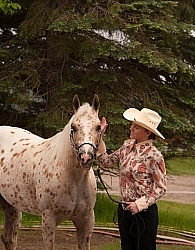 Appaloosa Showing Halter