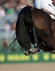 Alltech WEG Show Jumping Hocks in Action