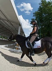 David Marcus and Chevris Capital warm up day  WEG 2014 Normandy