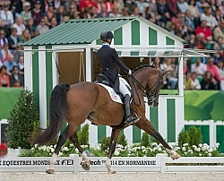 Laura Graves and Verdades grand Prix Special WEG 2014 Normandy,