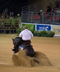 Shawn Flarida and Spooks Gotta Whiz Indivudual Final Winner WEG
