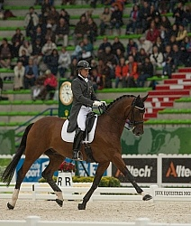 Roland Tong IRL and Pompidou Team Grand Prix WEG 2014 Normandy