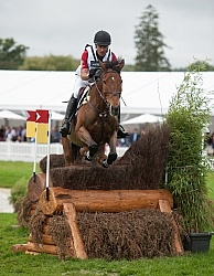 Peter Barry and Kilrodan CAN on Course at WEG 2014 Normandy, F