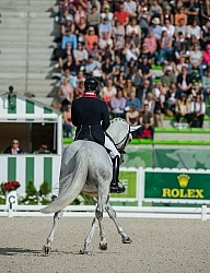 Michael Eilberg and Half Moon Delphi Grand Prix Special WEG 2014
