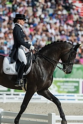 WEG 2014 Normandy