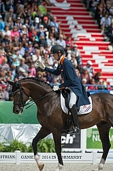 Diederik van Silfhout and Arlando NH N.O.P. Freestyle WEG 2014 N