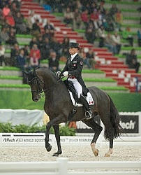 Davis Marcus and Chrevi s Capital n the Team Grand Prix WEG 2014