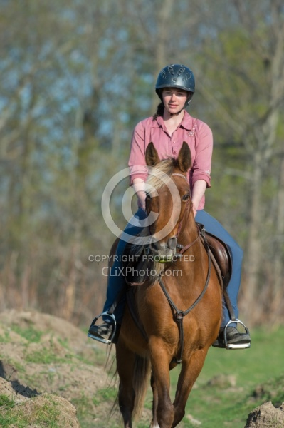 Tennessee Walker on the Trail