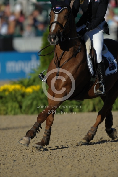 Alltech WEG Show Jumping Legs and Joints in Action