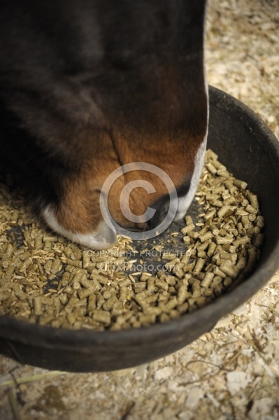 Eating Grain