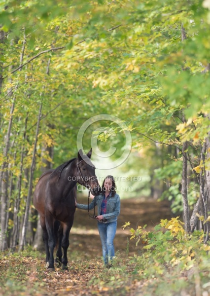Standardbred with Tween