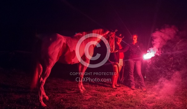Getting the Horses used to Flares