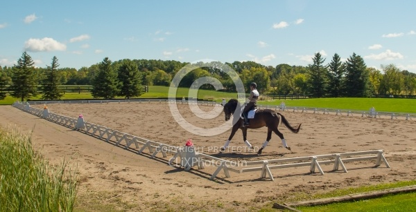 Outdoor Ring Dressage Serpentine