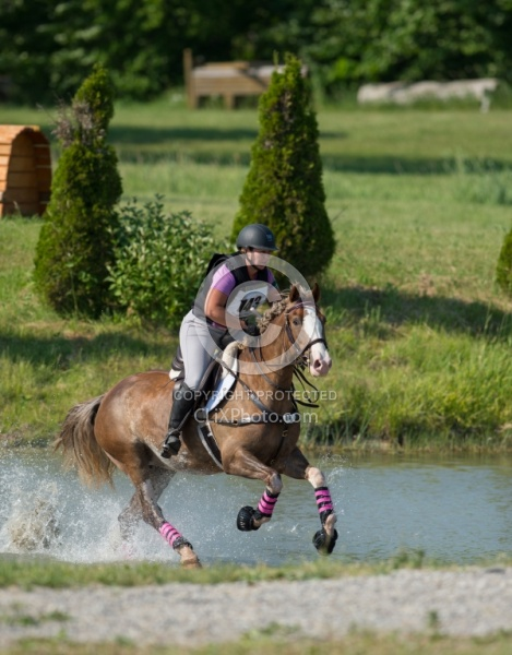 Equine Athlete, Eventing Lower Level Leg Protection Eventing